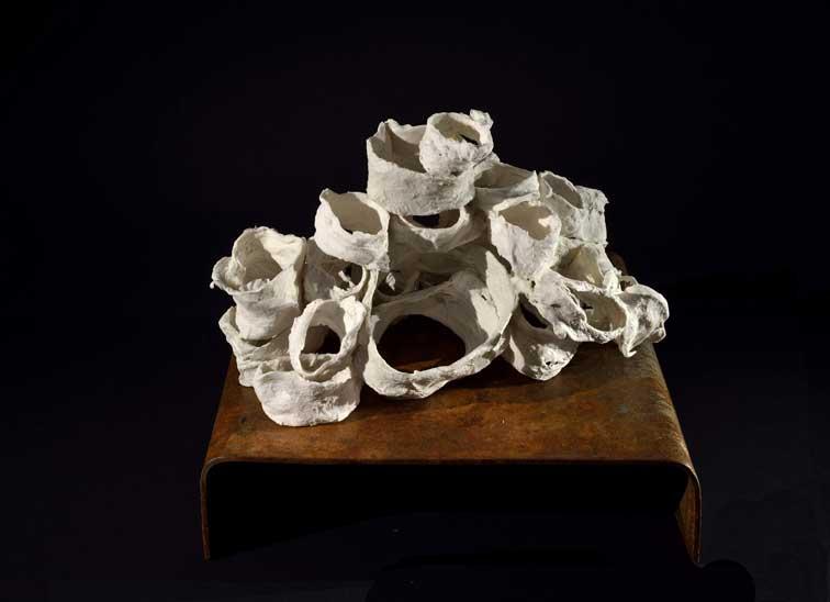 memoria - fibre, porcellana, ferro - 2013