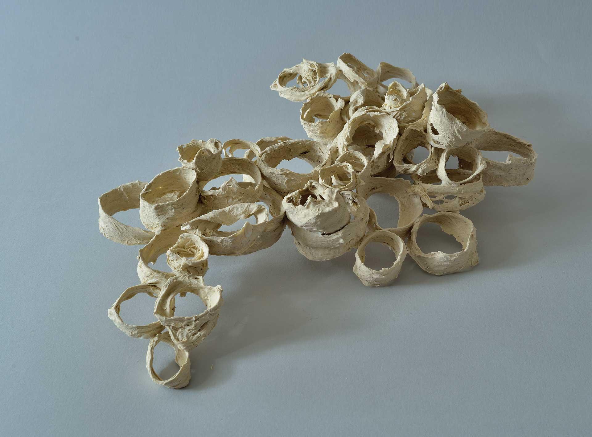 tracce - fibre vegetali e porcellana - 2012