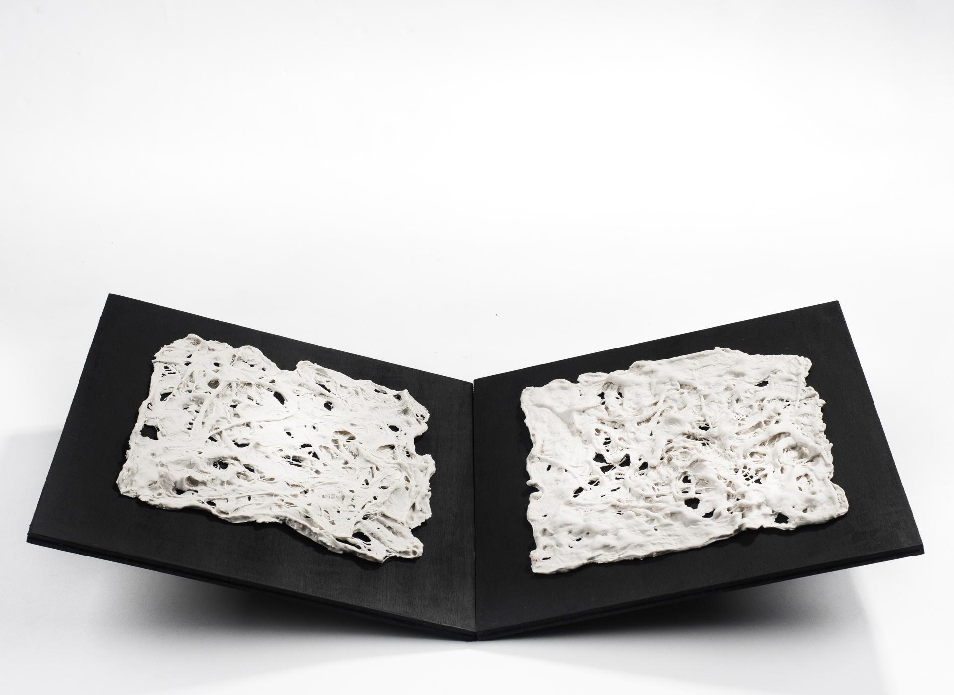 Porcelain, organic materials - 2017