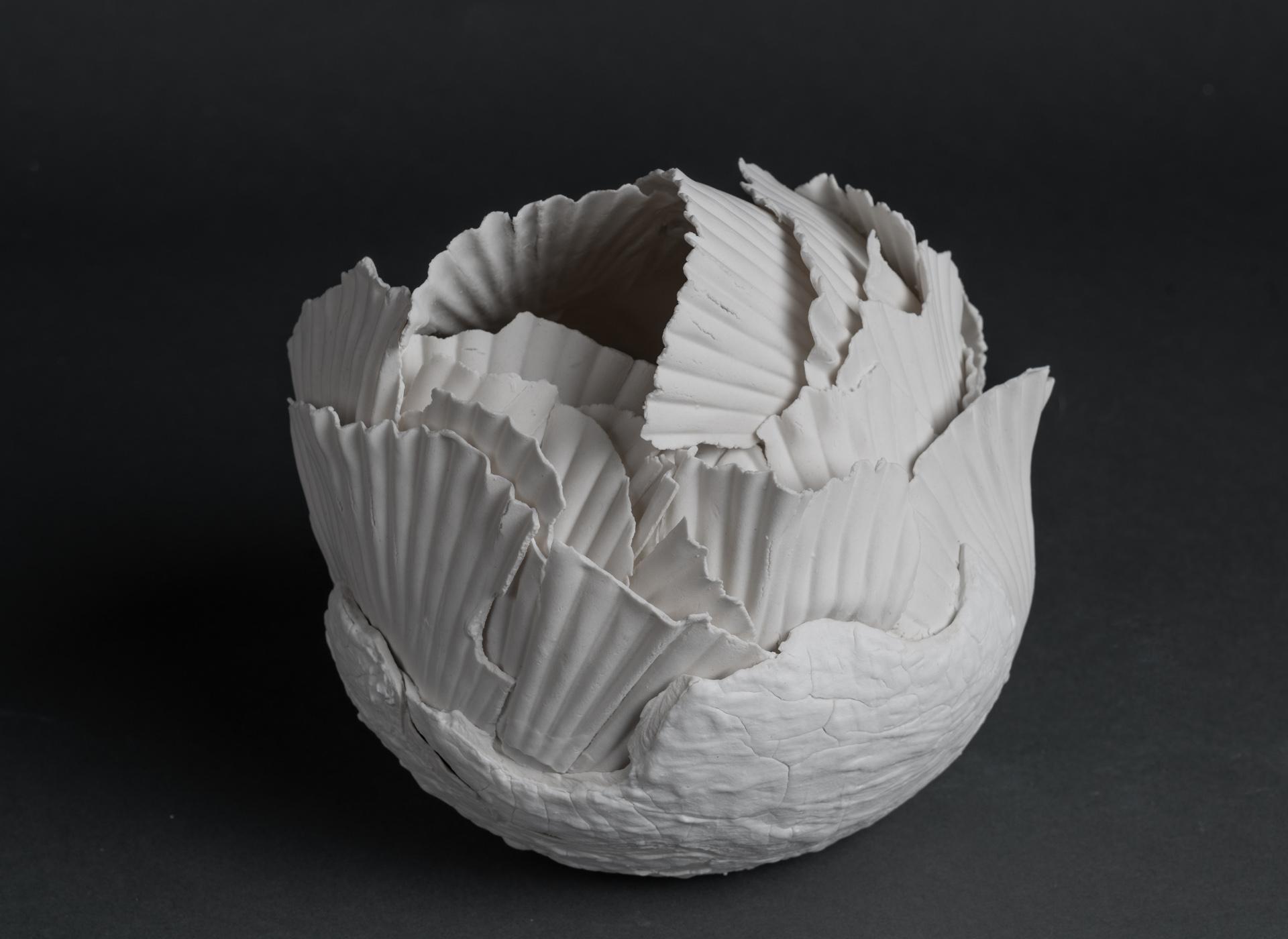 porcelain - 2019